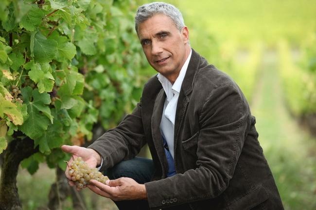 本頁圖片/檔案 - winegrape-080
